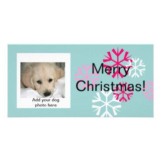 Custom Dog Christmas Photo Cards Pink Blue