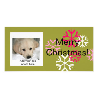 Custom Dog Christmas Photo Cards Pink Green
