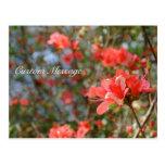 Custom Floral Postcard