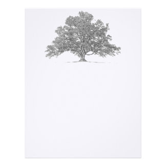 Custom Genealogy Oak Tree Stationary Letterhead