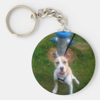 Custom gifts key chains