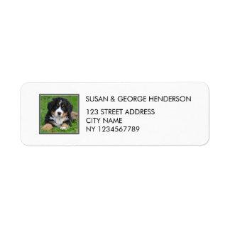 Custom kids pets photo family return address label