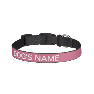 Custom Light Vivacious Classy Color Complementing Pet Collar