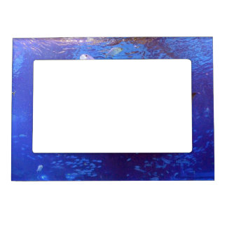custom magnetic picture frame from Zazzle