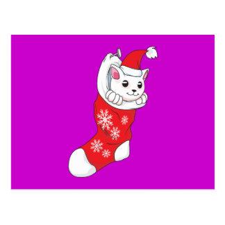 Custom Merry Christmas White Kitten Cat Red Sock Postcard