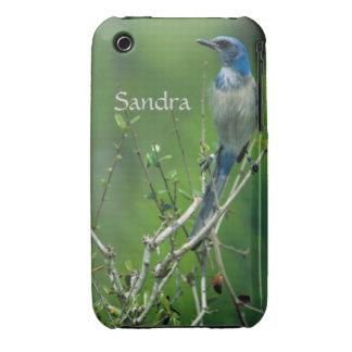 Custom Name Florida Scrub Jay iPhone 3 Covers