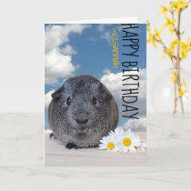 Custom Name Happy Birthday Guinea Pig White Daisy Card