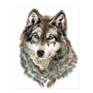 Custom Name or Text Wolf watercolor Animal Postcard