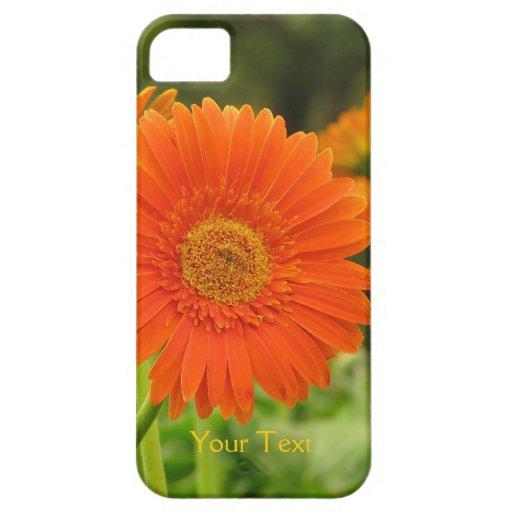 Custom Orange Gerbera Daisy iPhone 5 Covers