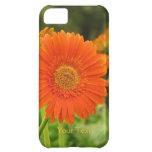 Custom Orange Gerbera Daisy iPhone 5C Cases