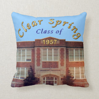 Custom Orders Accepted for Class Reunion Gifts Throw Pillow