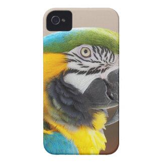 custom personalize Anniversaries Destiny'S Destiny Case-Mate iPhone 4 Case