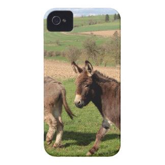 custom personalize Anniversaries Destiny'S Destiny Case-Mate iPhone 4 Cases