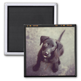 Custom Personalized Photo Gift 2 Inch Square Magnet