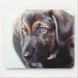 """Custom Personalized Photo Gift Mouse Pad<br><div class=""""desc"""">Add your favorite family photo to create a unique one of a kind computer mousepad for yourself or custom personalized gift for someone special! Click the CUSTOMIZE IT button to add your name or custom text for an even more personalized design.</div>"""