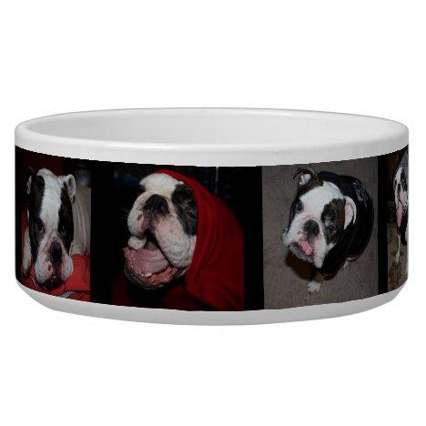 Custom Personalized Photo Pet Dog Bowl