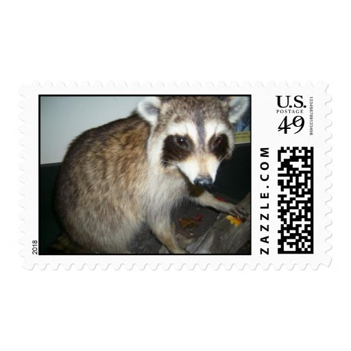 Custom Personalized Postage Stamps (Certified)