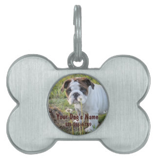 Custom Pet ID Tag with Picture, Name, Phone Number