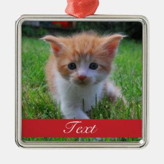 Custom Pet Photo and name or date Metal Ornament