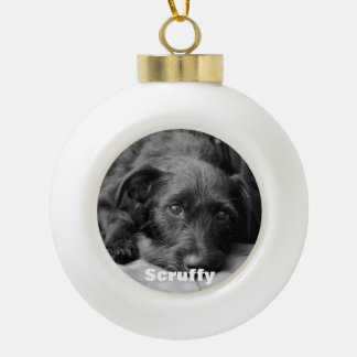 Custom pet photo ball ornament