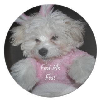 Custom Pet Photo Theme Melamine Plate