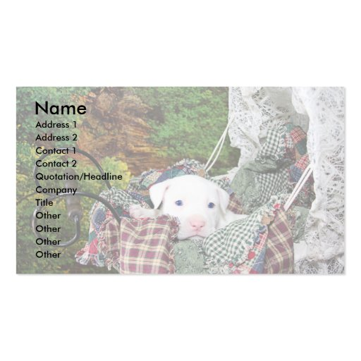Custom Pet Sitting Service Double-Sided Standard Business Cards (Pack Of 100)