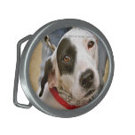 Custom Photo Belt Buckles Custom Made Belt Buckles<br><div class='desc'>Custom photo belt buckles,  by red_dress,  and custom made belt buckles personalized with your favorite pictures.     Sample photos used are for illustration purposes only. PHOTOS ARE NOT INCLUDED.</div>