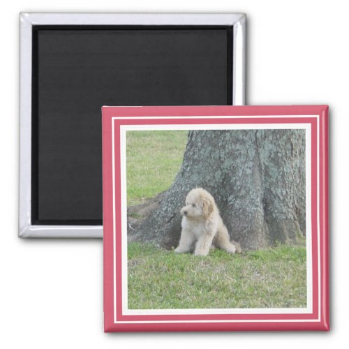 Custom Photo Template Bright Hot Pink  White Magnet