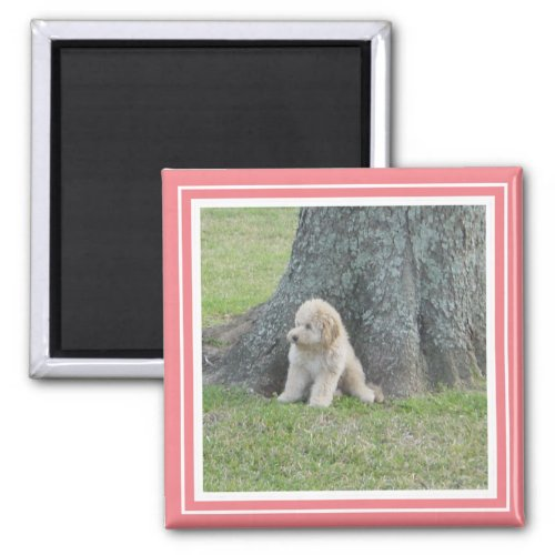 Custom Photo Template Soft Pink Coral White Magnet