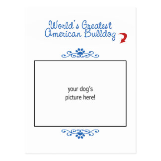 Custom Photo! Worlds Greatest American Bulldog Postcards