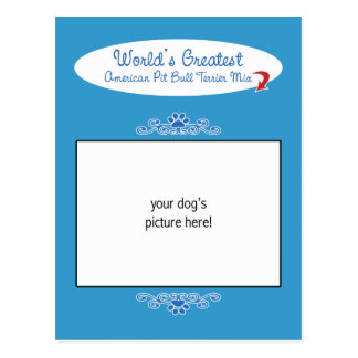 Custom Photo Worlds Greatest American Pit Bull Mix Postcard