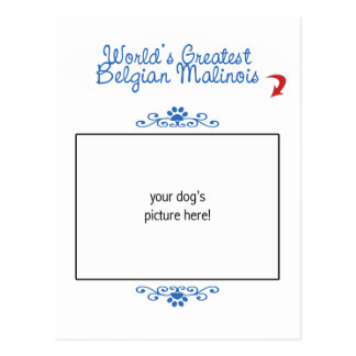 Custom Photo! Worlds Greatest Belgian Malinois Post Cards