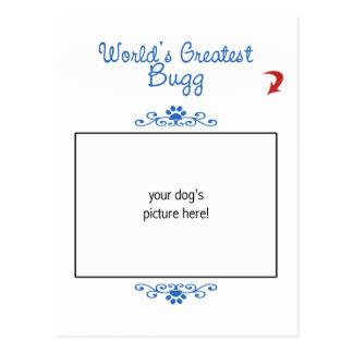 Custom Photo! Worlds Greatest Bugg Post Cards