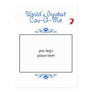 Custom Photo! Worlds Greatest Cav-A-Mo Postcard