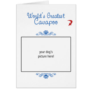 Custom Photo! Worlds Greatest Cavapoo Card