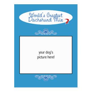 Custom Photo! Worlds Greatest Dachshund Mix Postcard