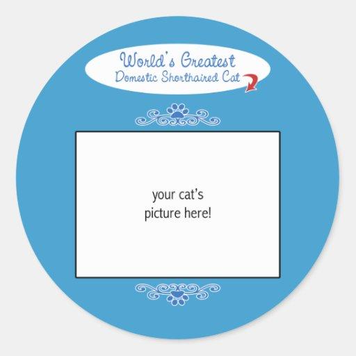 Custom Photo! Worlds Greatest Domestic Shorthair Stickers