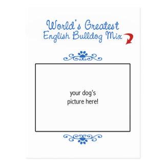 Custom Photo! Worlds Greatest English Bulldog Mix Post Card