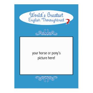 Custom Photo! Worlds Greatest English Thoroughbred Postcard