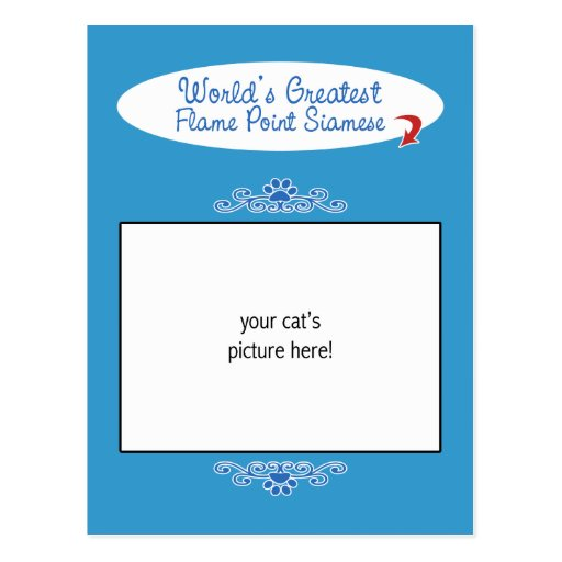 Custom Photo! Worlds Greatest Flame Point Siamese Post Card