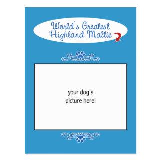 Custom Photo! Worlds Greatest Highland Maltie Postcard