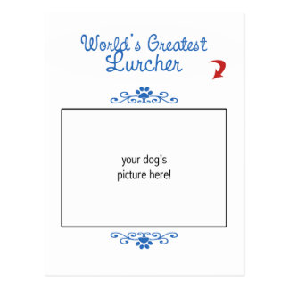 Custom Photo! Worlds Greatest Lurcher Postcard