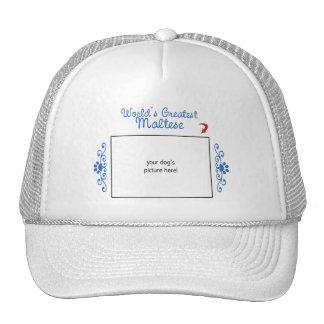 Custom Photo! Worlds Greatest Maltese Trucker Hat