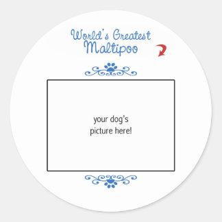 Custom Photo! Worlds Greatest Maltipoo Classic Round Sticker