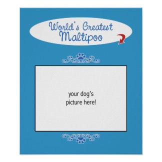 Custom Photo! Worlds Greatest Maltipoo Poster