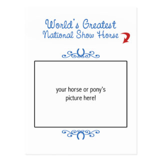 Custom Photo! Worlds Greatest National Show Horse Postcard