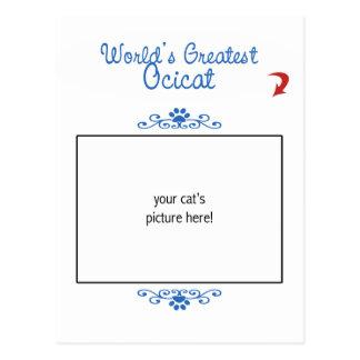 Custom Photo! Worlds Greatest Ocicat Postcard
