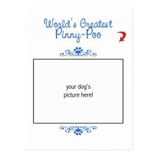 Custom Photo! Worlds Greatest Pinny-Poo Postcard