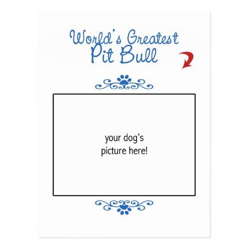 Custom Photo! Worlds Greatest Pit Bull Postcard