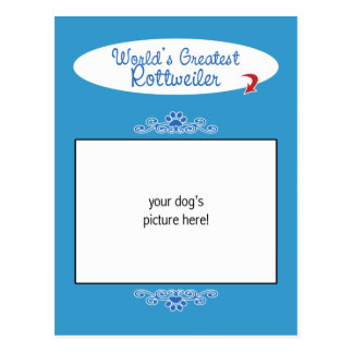 Custom Photo! Worlds Greatest Rottweiler Postcard